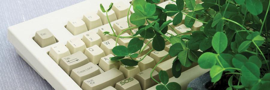 How Plants Communicate