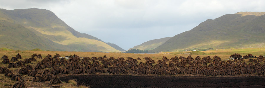 TERRA About Peat and Feed - Part II