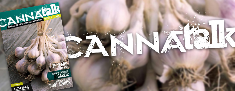 CANNAtalk Issue 2