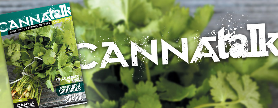 CANNAtalk Issue 3