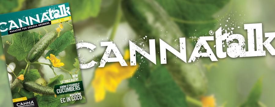 CANNAtalk Issue 4