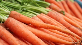 Grow it yourself: Carrots