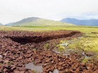 Different types of high peat
